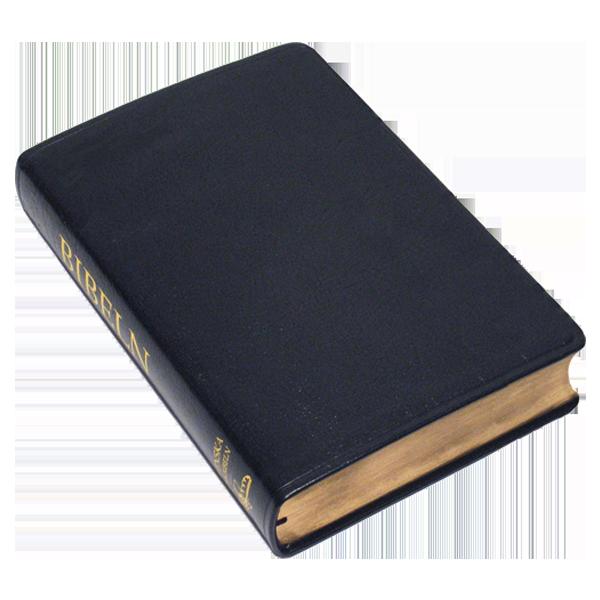 Folkbibeln 2015 Storformat svart konstskinn