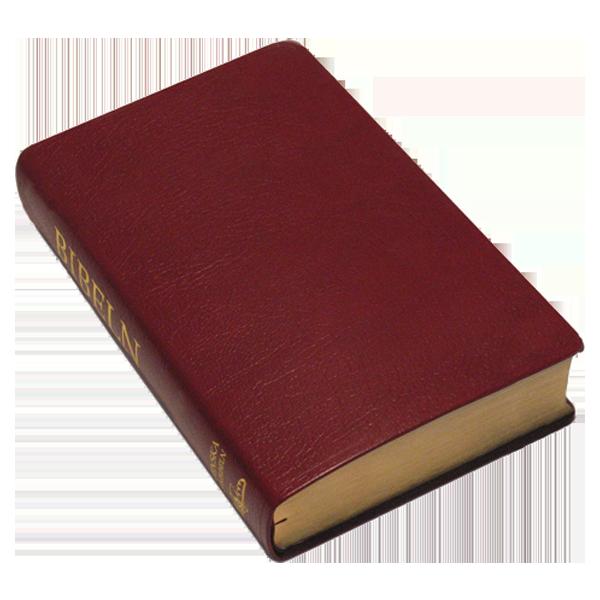 Folkbibeln 2015 Storformat röd konstskinn