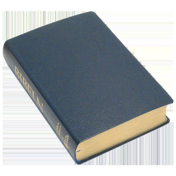 Folkbibeln 2015 Mellanformat svart konstskinn