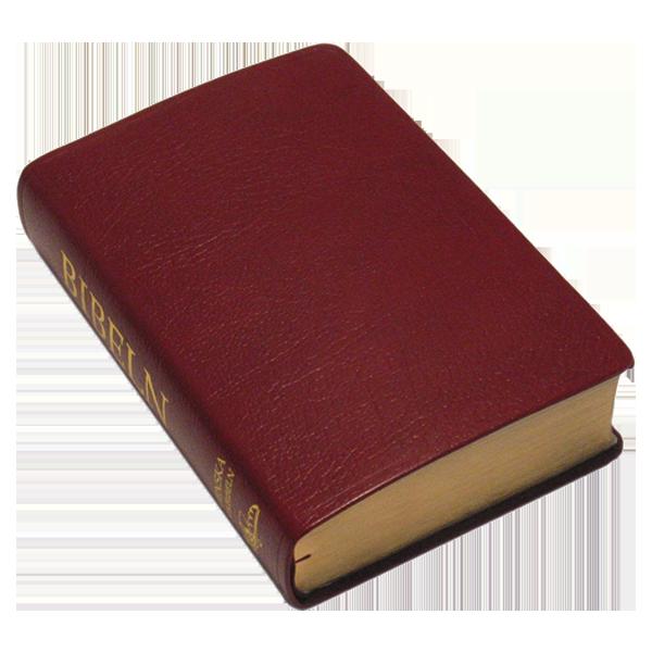 Folkbibeln 2015 Mellanformat röd konstskinn