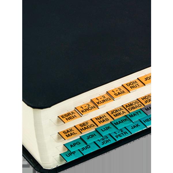 Bibelregister - GT, NT, Apokryferna, orange - grå - grön