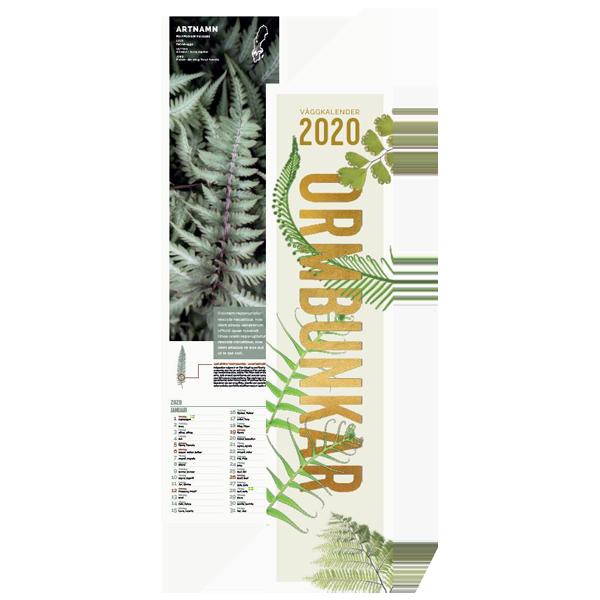 Ormbunkar - väggkalender 2020