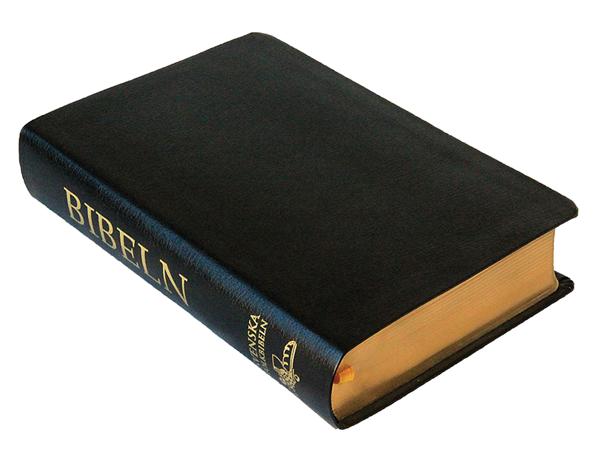 Svenska Folkbibeln 2015 - Mellanformat - Skinn - Svart