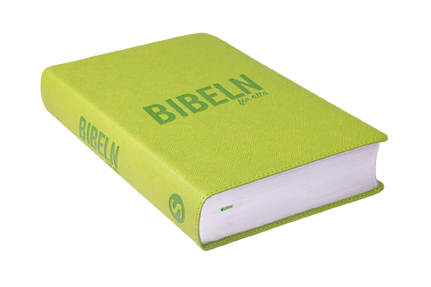 Bibeln för alla : grön