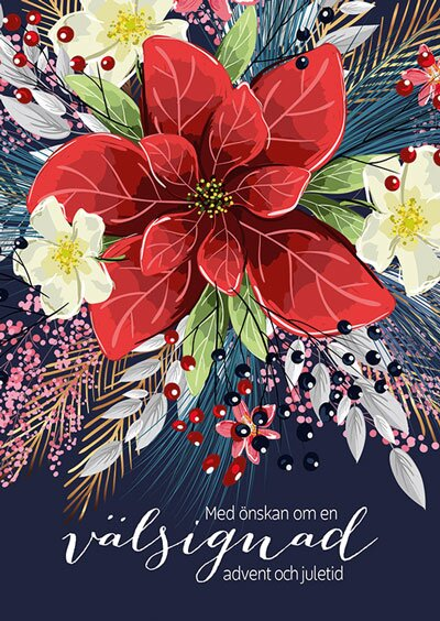 Julkort - Julstjärna